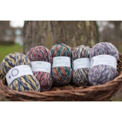 .Signature 4 Ply - Country Birds