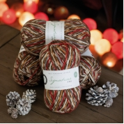 Signature 4ply - Christmas Robin 2019