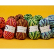 Signature 4PLY Seasons by Winwick Mum