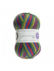 Signature 4 Ply - Winwick Mum Collection